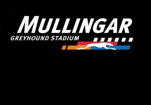 mullingar-greyhound